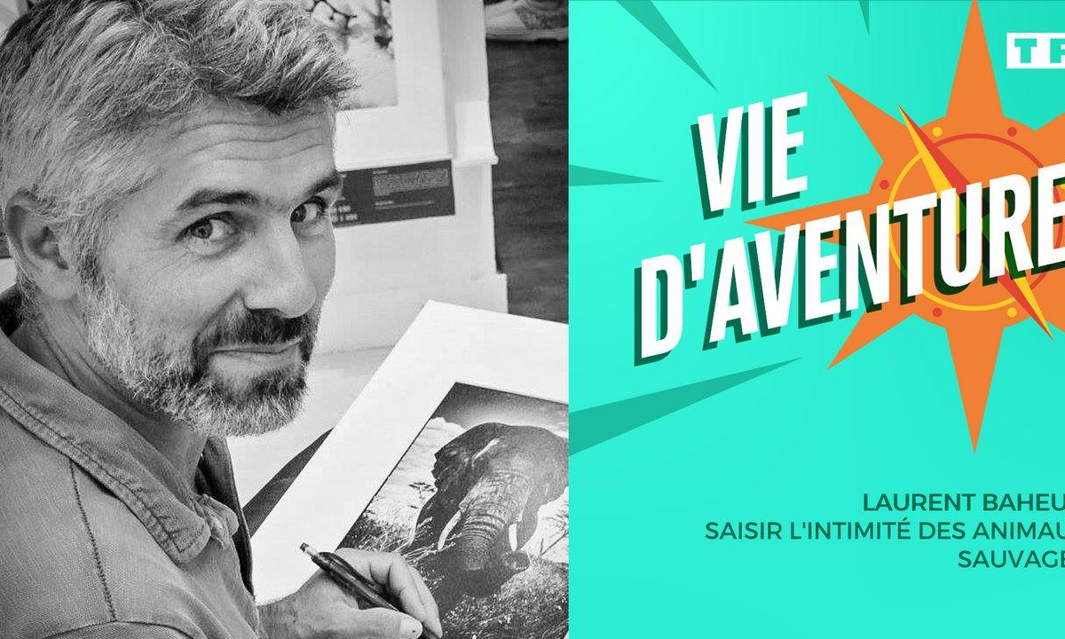 Vie d'aventure: Laurent Baheux, saisir l'intimité des animaux sauvages