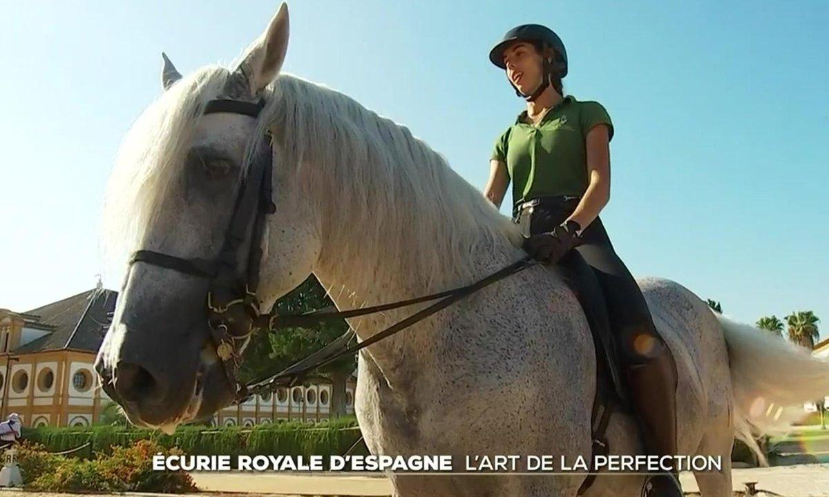 Andalousie : l'école où le cheval est roi