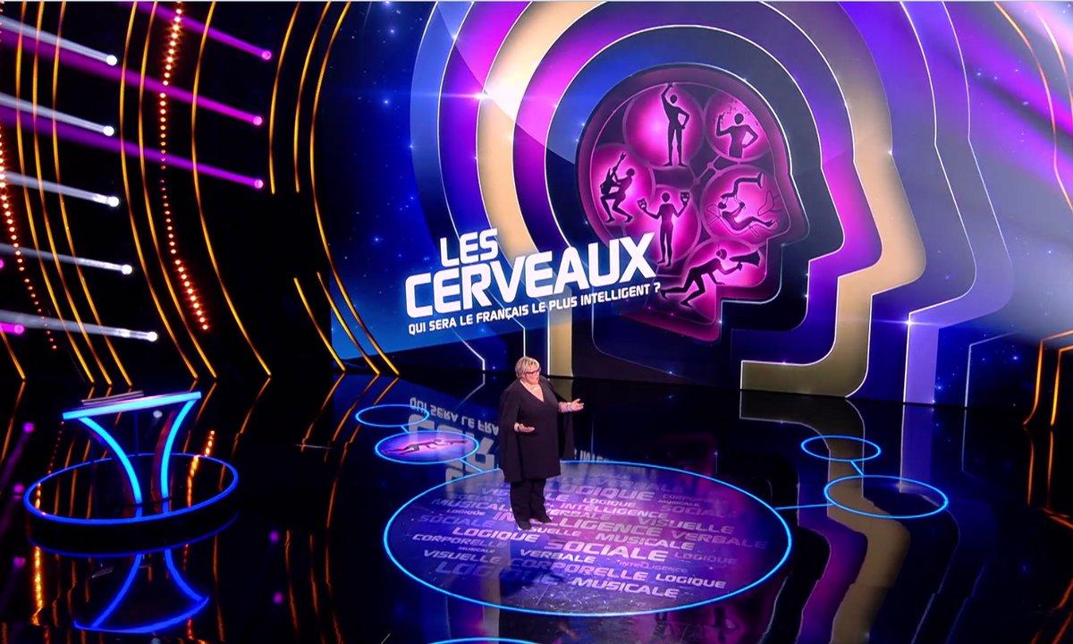 """Découvrez le test d'intelligence des """"Cerveaux"""", le nouveau jeu de TF1"""