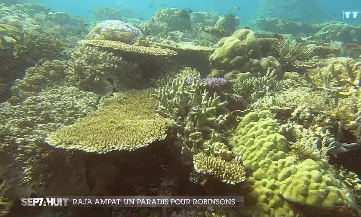 Ces Français qui vivent à Raja Ampat, le paradis pour Robinsons
