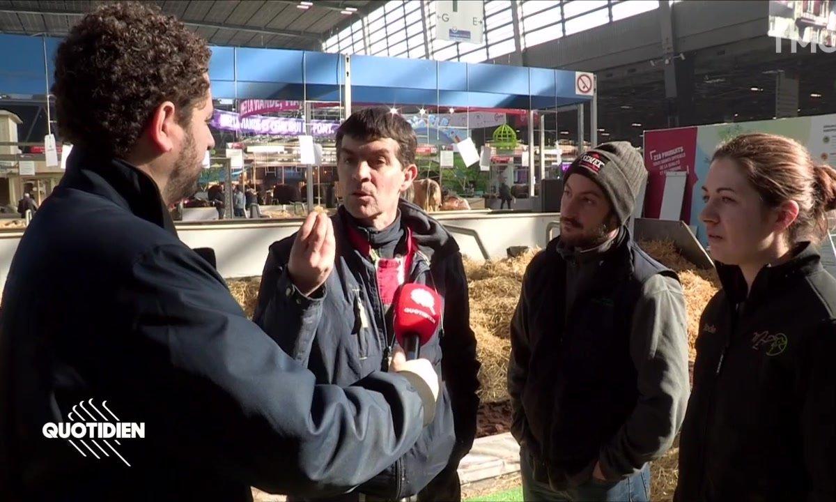 Chaouch Express: que pensent les agriculteurs des gilets jaunes ?