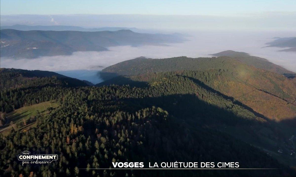 Confinement : la quiétude des cimes dans les Vosges
