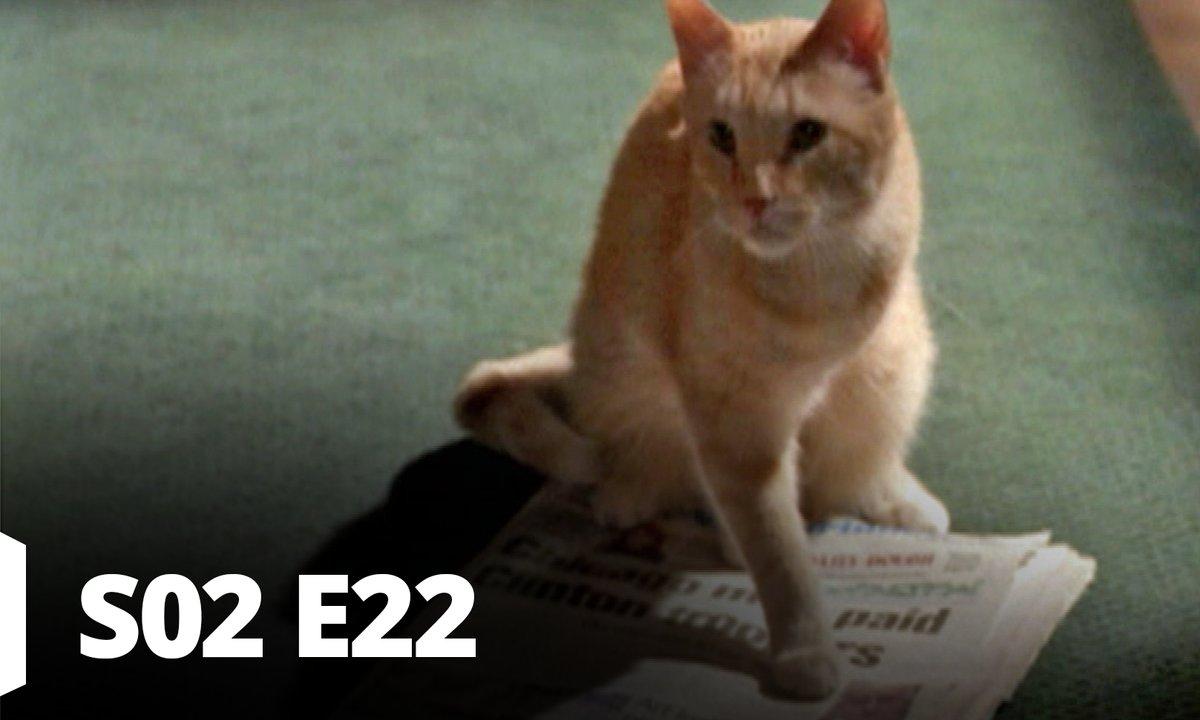 Demain à la une - S02 E22 - Vision finale