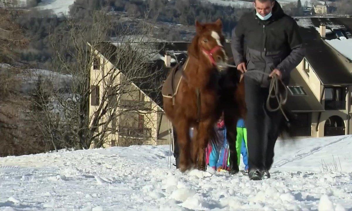 Dans les Hautes-Alpes, le cheval remplace les remontées mécaniques