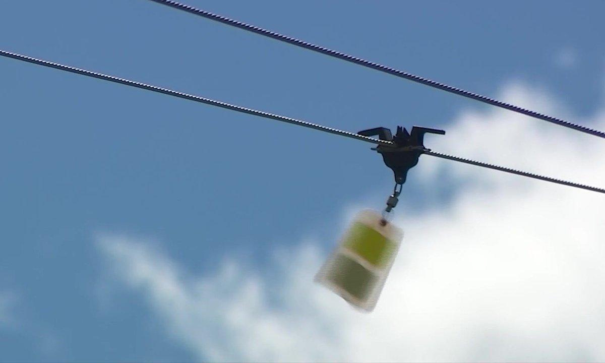 Des balises pour sauvegarder les oiseaux du parc de la Vanoise