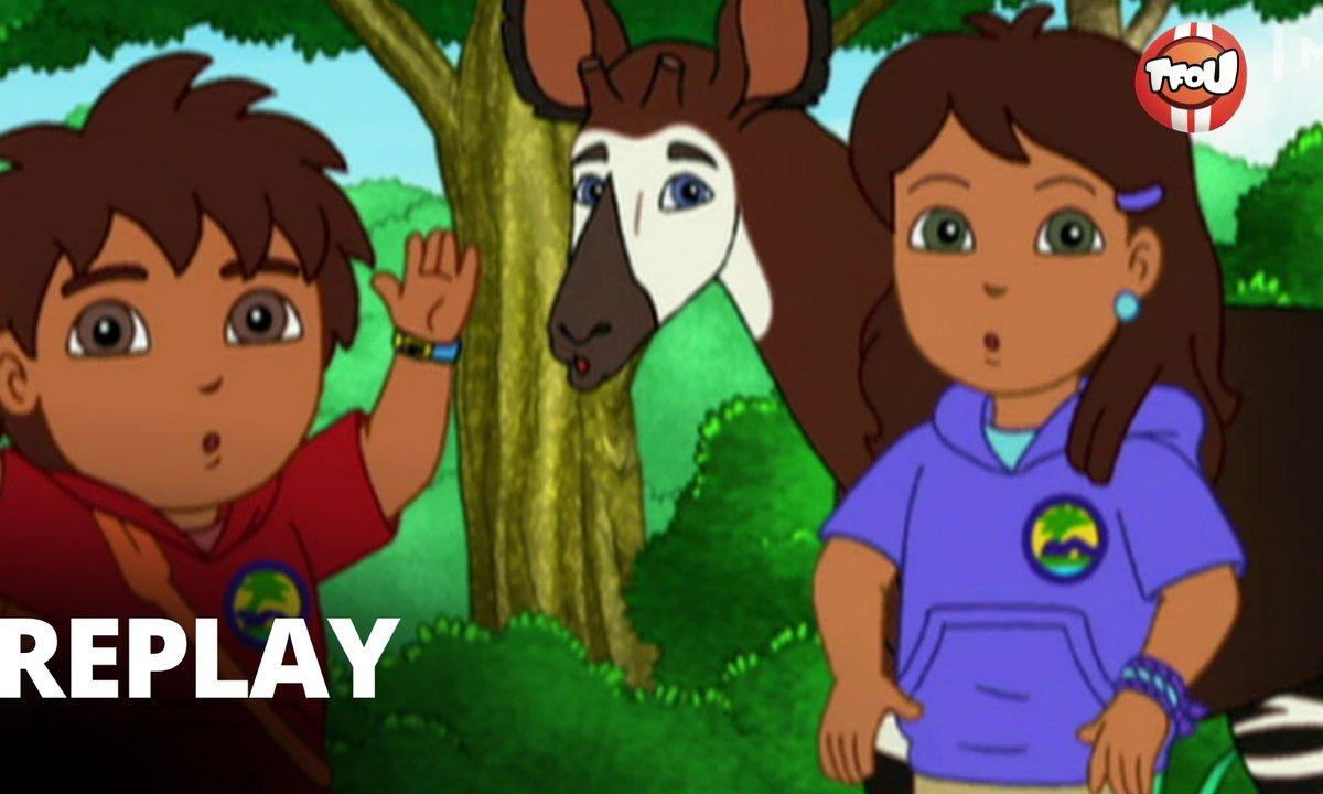 Diego  - S04 - Où se cachent les okapis ?