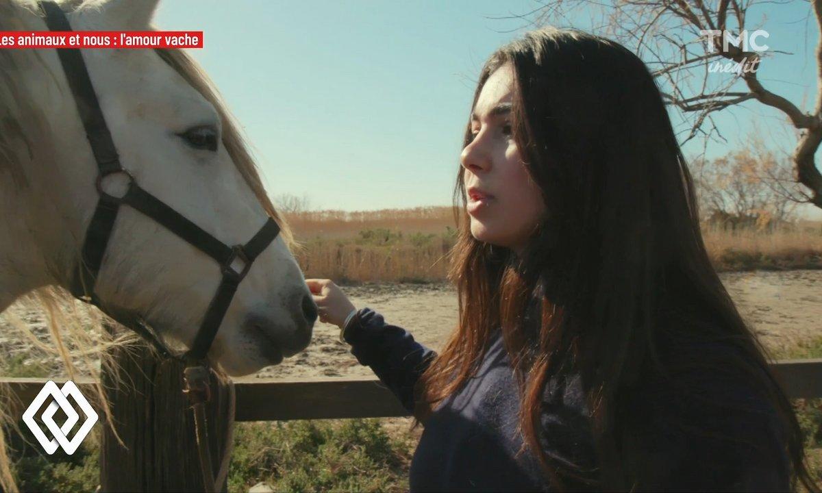 Faut-il arrêter de monter à cheval pour préserver le bien-être animal ?