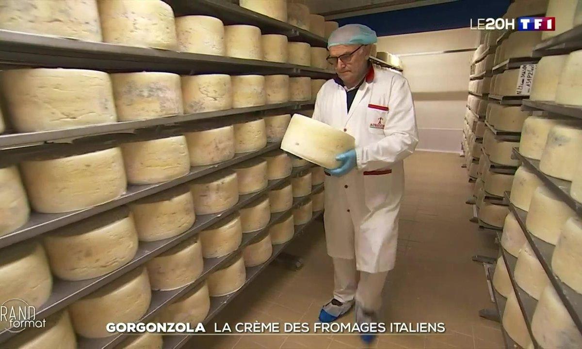 Gorgonzola : la crème des fromages italiens