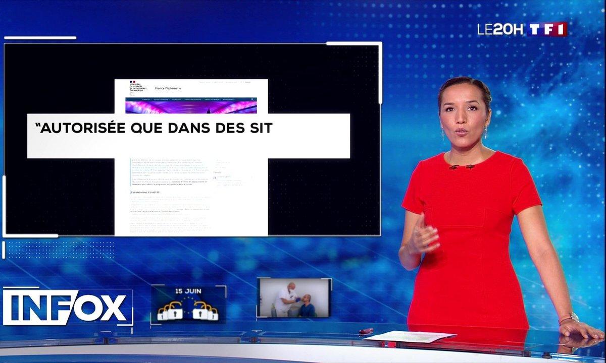 Info / Infox : les malades venus de l'étranger responsables de la reprise épidémique en France ?