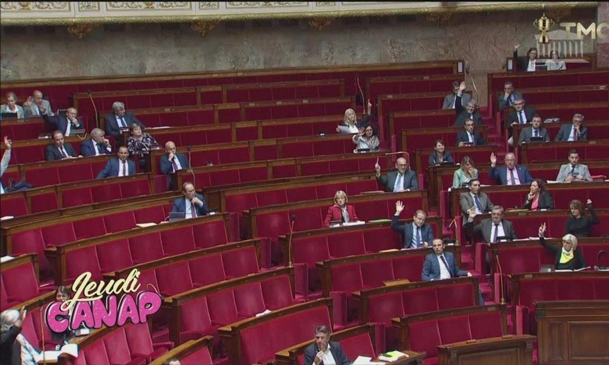 Jeudi Canap : les Foufous de l'Assemblée
