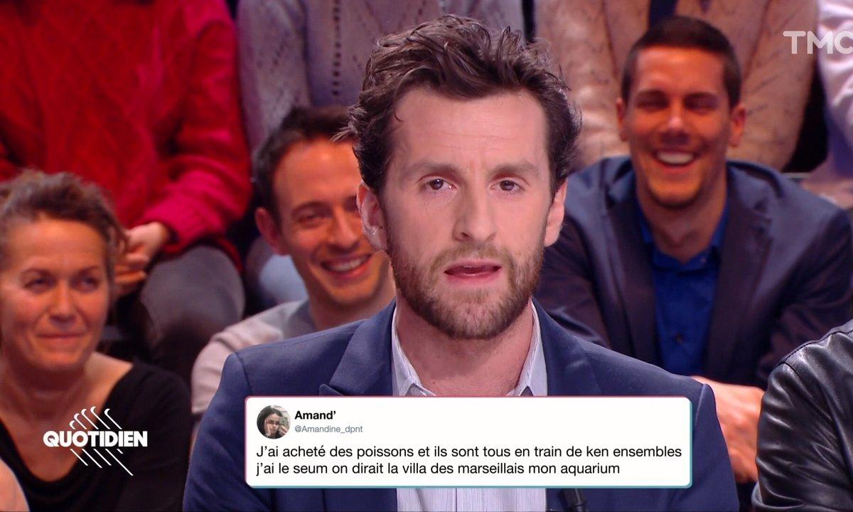 La vraie parole des Français vrais : les animaux (Pablo Mira)
