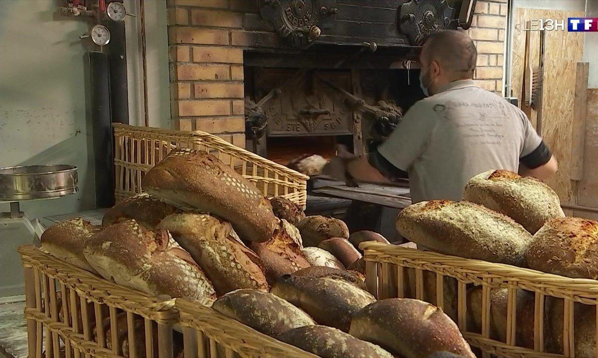 Le pain au levain revient au goût du jour