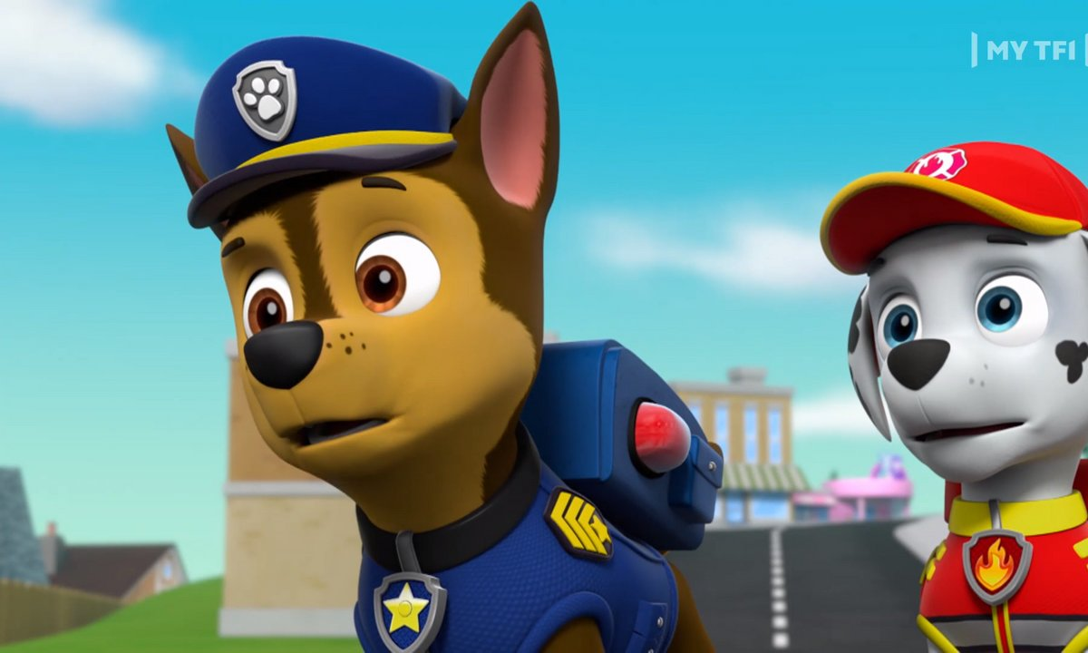 Paw Patrol, la Pat'Patrouille - S05 - Les chats secouristes