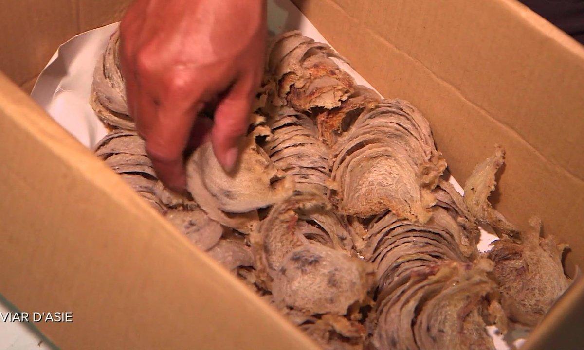 Les nids d'hirondelle, le caviar asiatique