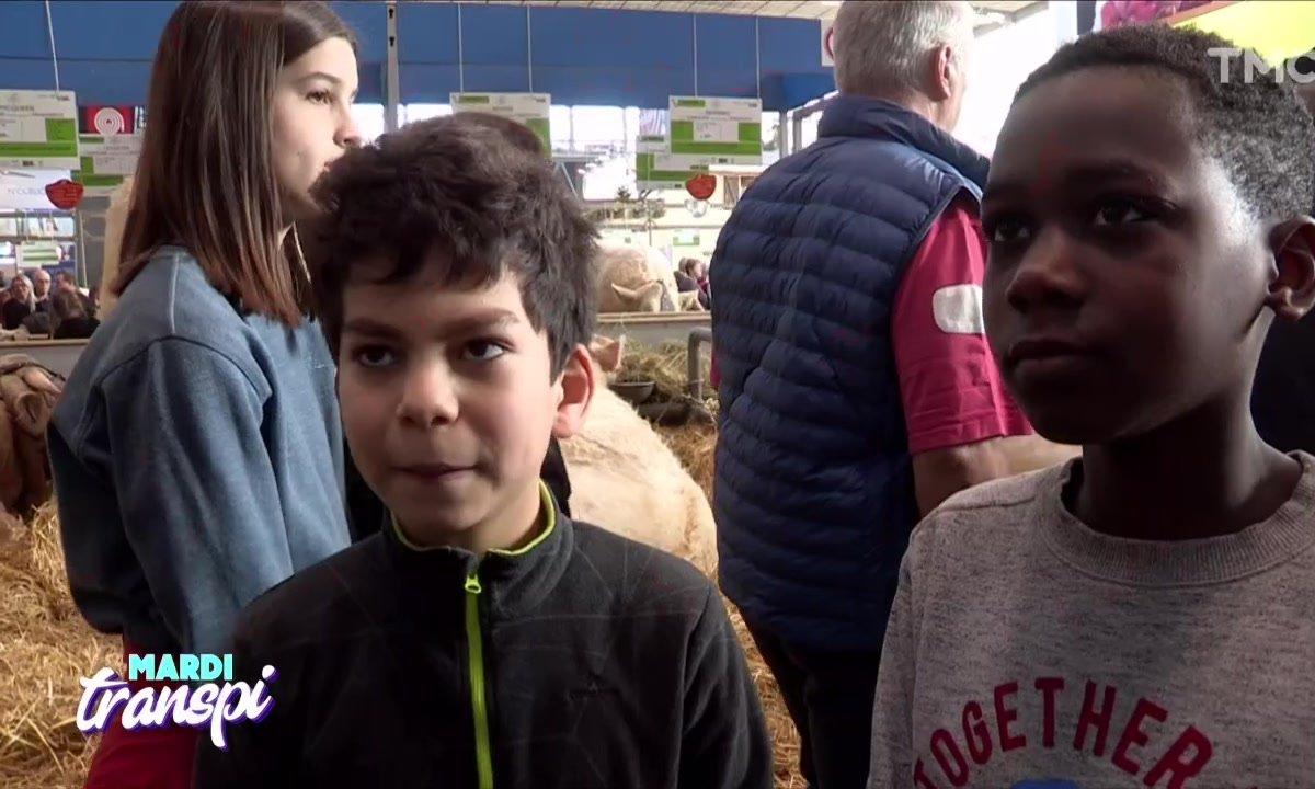 Mardi Transpi : vive les enfants, l'innocence et le Salon de l'agriculture