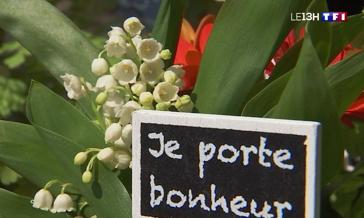 Muguet du 1er mai : les fleuristes dans les starting-blocks