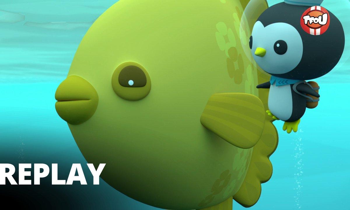 Octonauts - Les Octonauts & le poisson lune