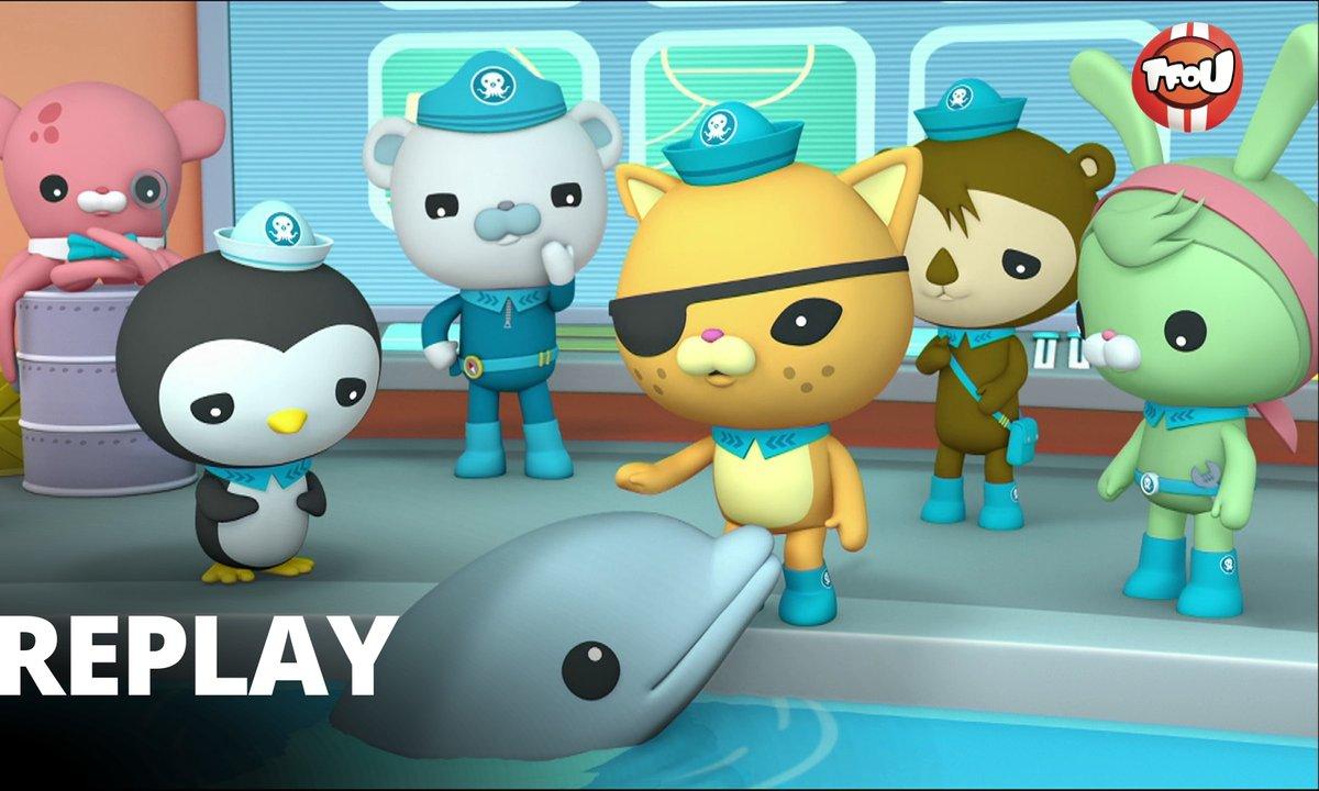 Octonauts - Les octonauts et le bébé dauphin