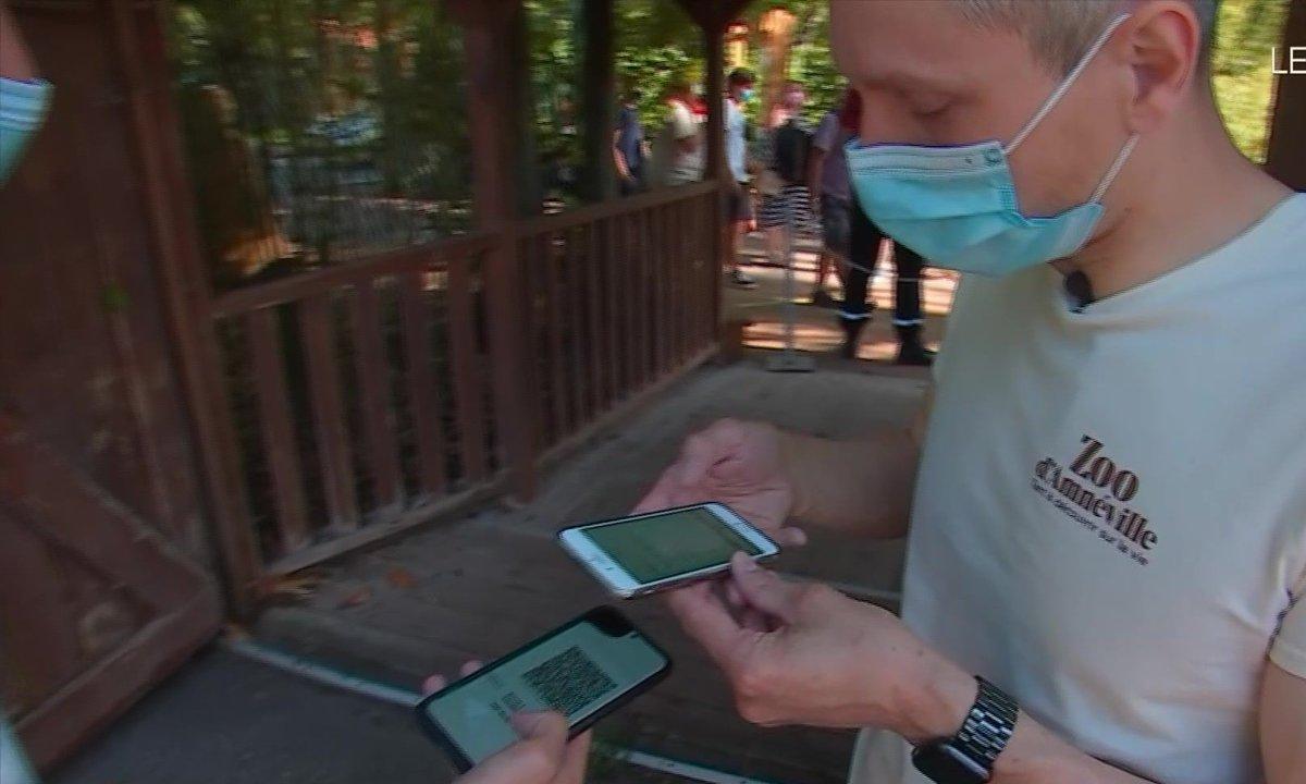 Pass sanitaire : les zoos se réorganisent