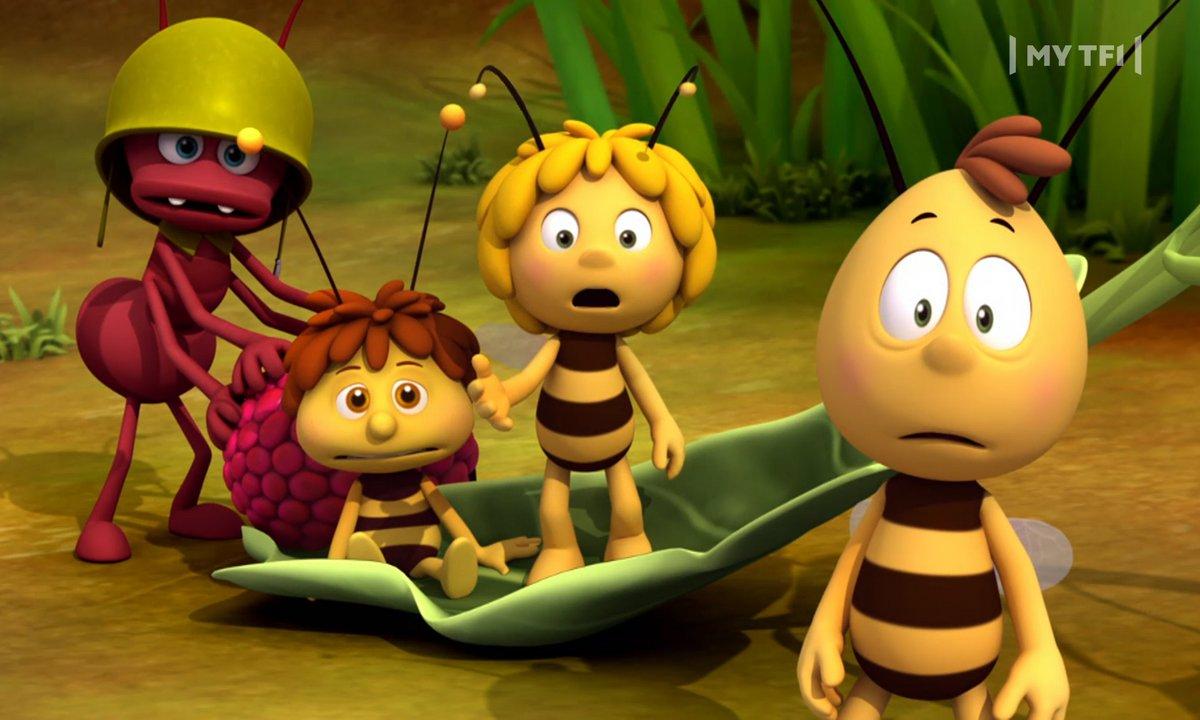 Maya l'Abeille - S01 E49 - Petite abeille deviendra grande