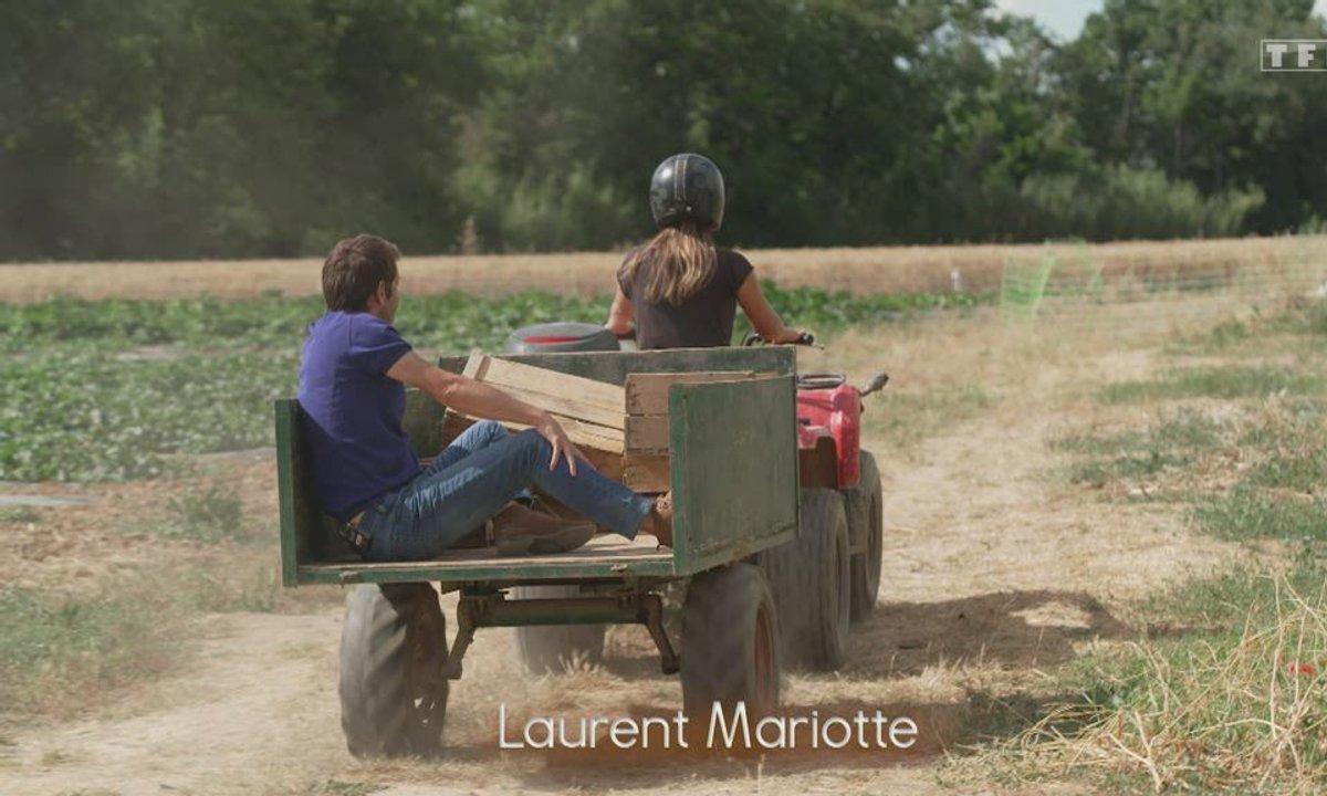 Petits plats en équilibre : sur la route des vacances - Melon