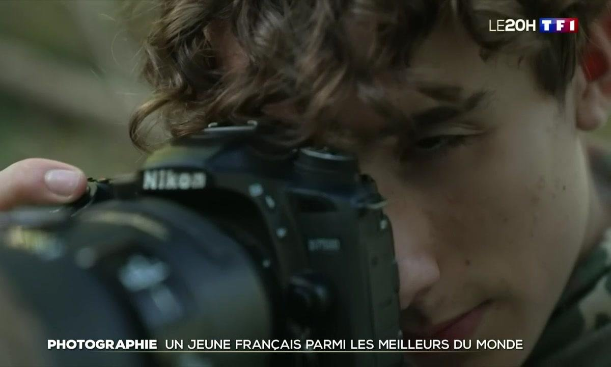 Photographie animalière : il gagne un prix international à 15 ans