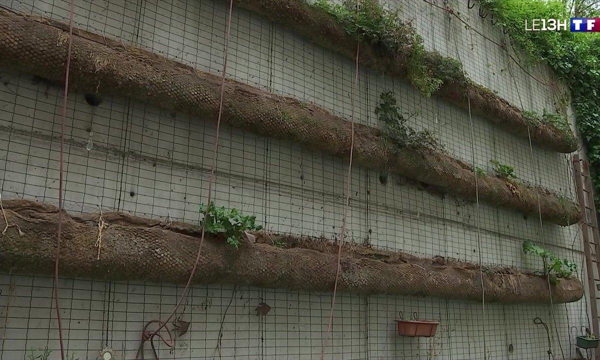 Potager à la verticale, une solution pour les citadins qui souhaitent se mettre au jardinage
