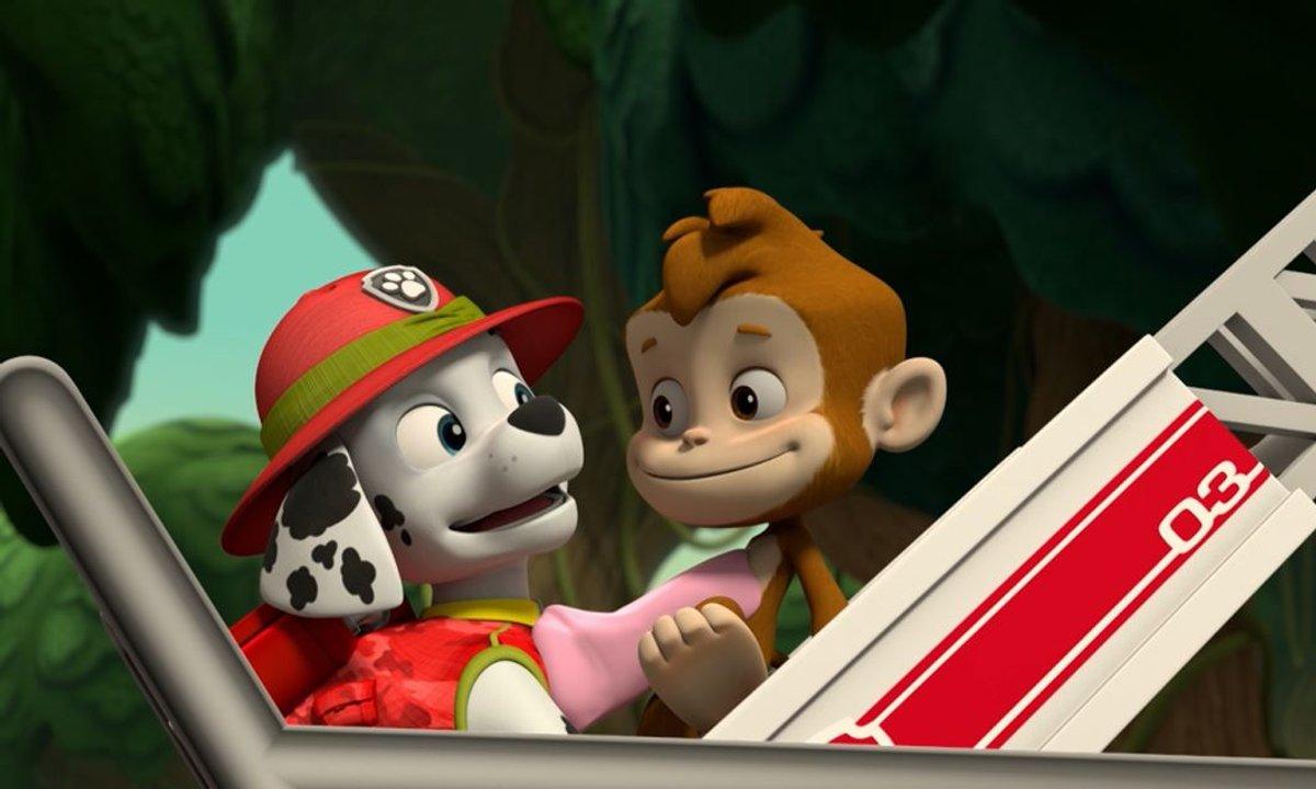 Paw Patrol, la Pat'Patrouille - A la rescousse des trois singes - Extrait