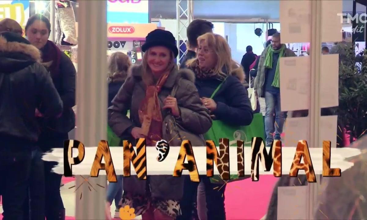 Panayotis Pascot : l'ami des animaux a du flair  (2/2)
