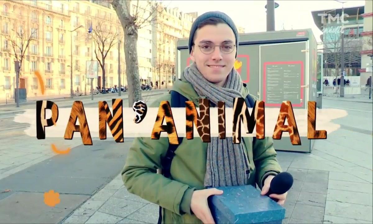 Panayotis Pascot l'ami des animaux (1/2)