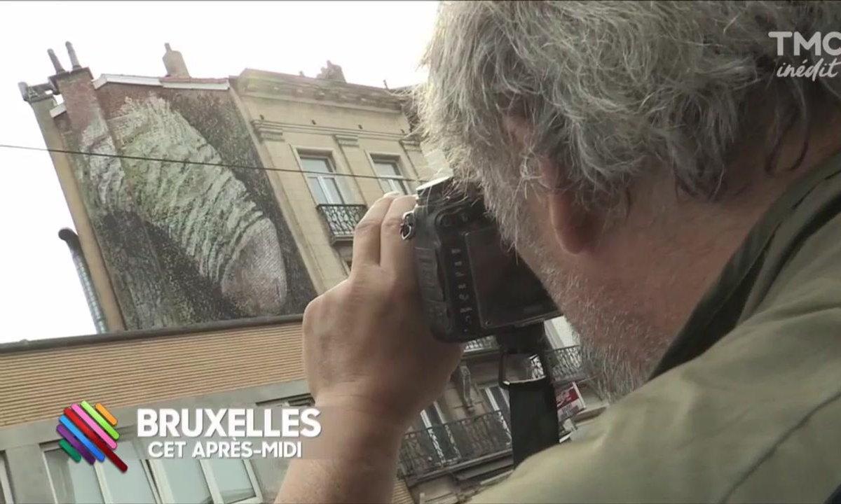 Un graffiti classé X choque Bruxelles
