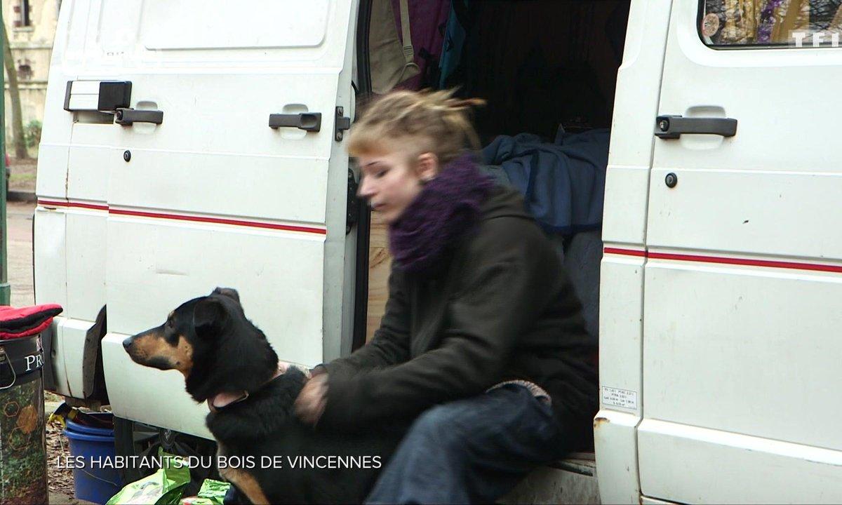 SEPT À HUIT LIFE - Les habitants du bois de Vincennes
