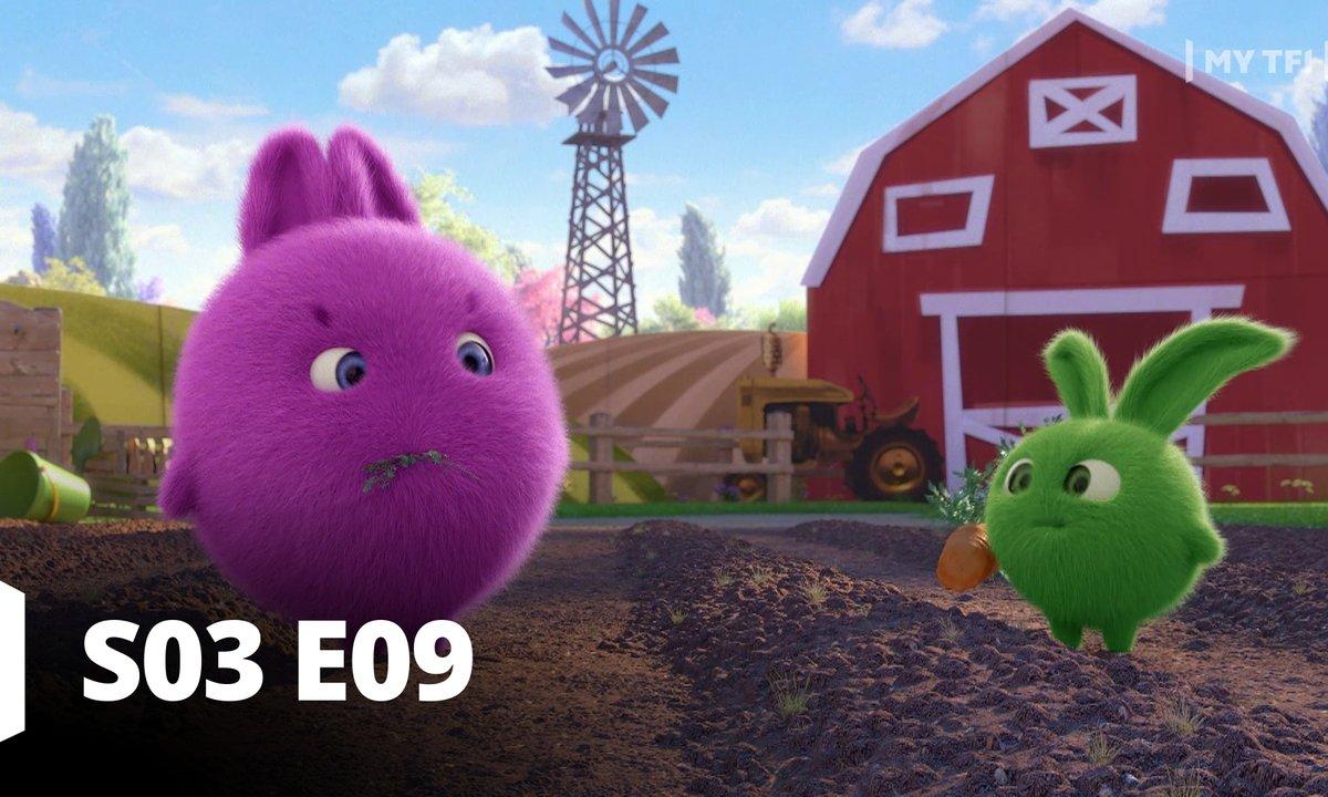 Sunny bunnies - S03 Episode 61
