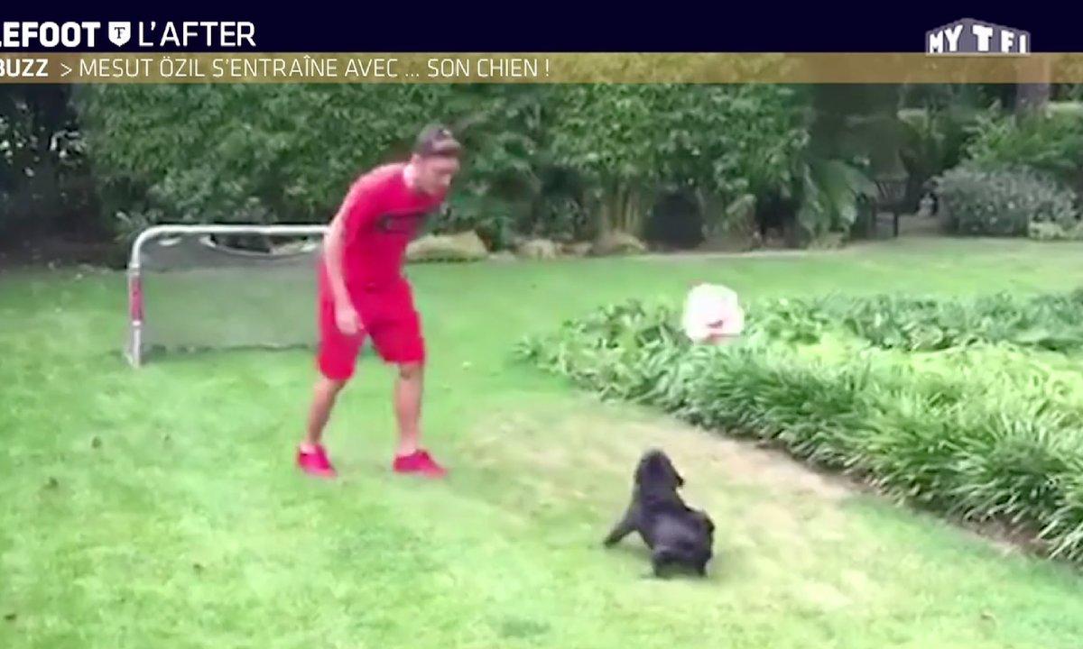 Téléfoot, l'After - Le Buzz : Mesüt Ozil joue avec son chien