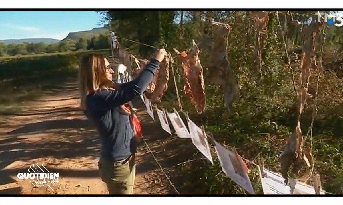Toulouse : par écologie, ils enterrent... leurs slips