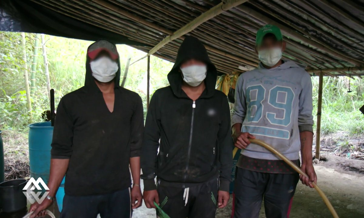 Immersion dans un labo de cocaïne en pleine jungle