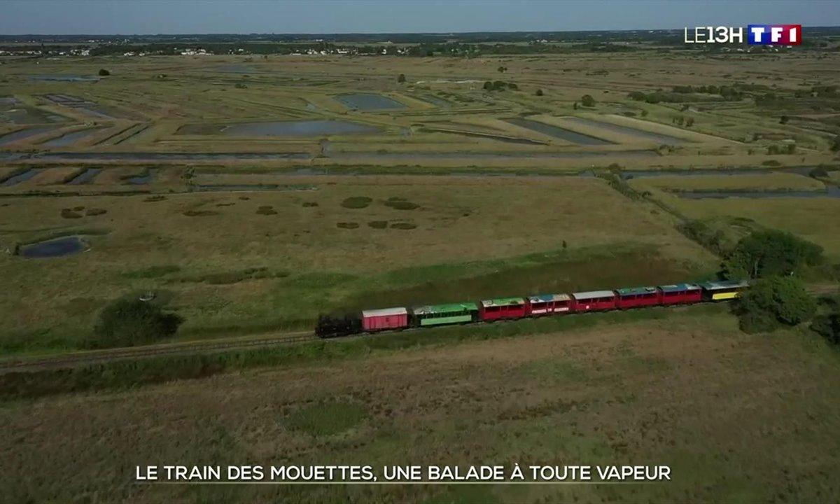 Voyage en Charente-Maritime à bord du Train des Mouettes