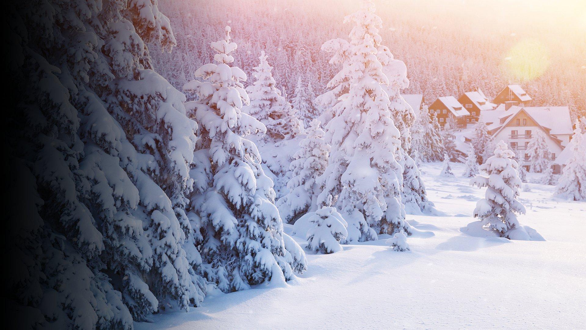 fond Bienvenue sur le tournage de Coup de foudre à Noël avec Julie De Bona et Tomer Sisley !