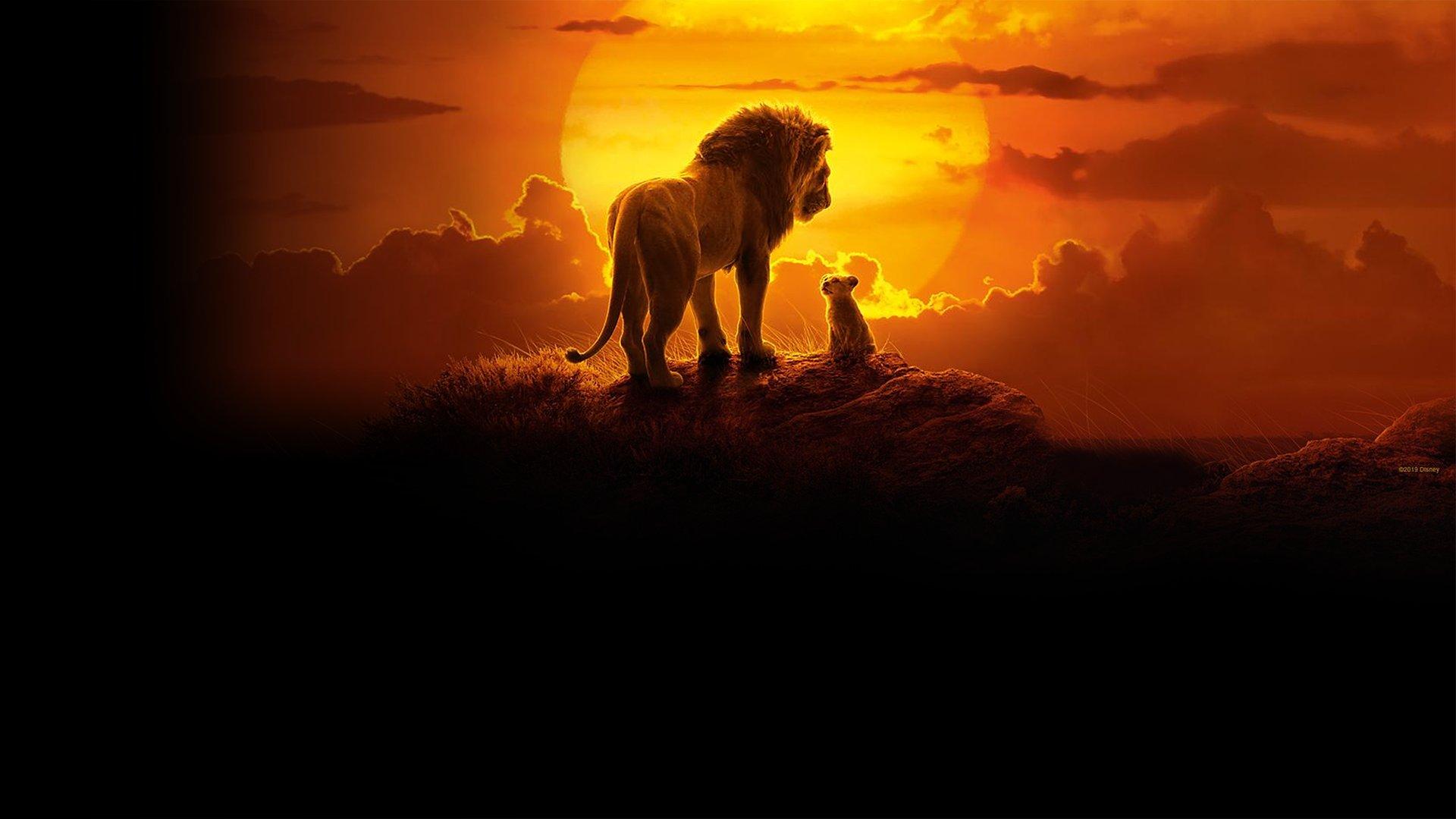 fond Le Roi Lion