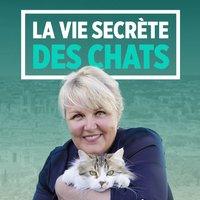 Chats et sentiments avec Charlotte Valandrey