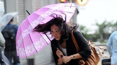 France-Angleterre : le crunch annulé à cause du typhon Hagibis