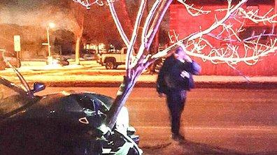Insolite : Ivre, elle roule avec un arbre coincé dans son capot