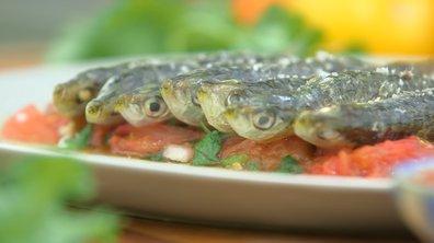 Sardine à la tomate à la plancha