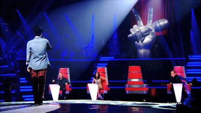 TF1 largement en tête avec la première de The Voice : la plus belle voix !