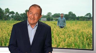 Episode 17 - Jason implante le quinoa en anjou
