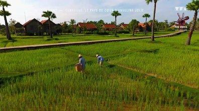 Direction le Cambodge, pays de cœur d'Angelina Jolie