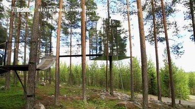 Hôtels fous : A la découverte du Tree Hotel en Suède