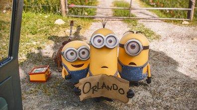 Les Minions : dans les coulisses du film événement de l'été