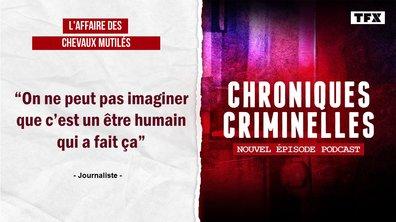 [INTÉGRALE] Chroniques criminelles : chevaux mutilés, les mystères d'une affaire hors du commun