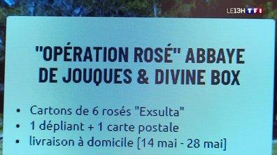 9 000 bouteilles de rosé à écouler sur Internet : le défi des sœurs de l'Abbaye de Jouques
